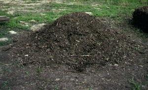 перегной почвы