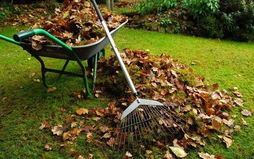 листовая земля сырье