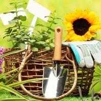 Удобрения для садовых цветов