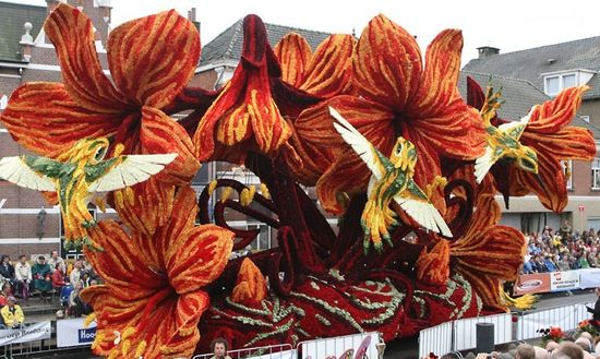 фестиваль цветов в Голландии (1)