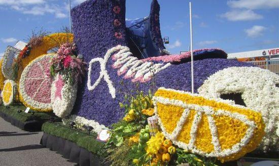 фестиваль цветов в Голландии (10)