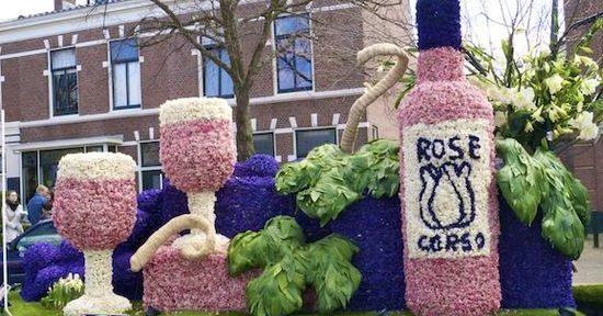 фестиваль цветов в Голландии (11)