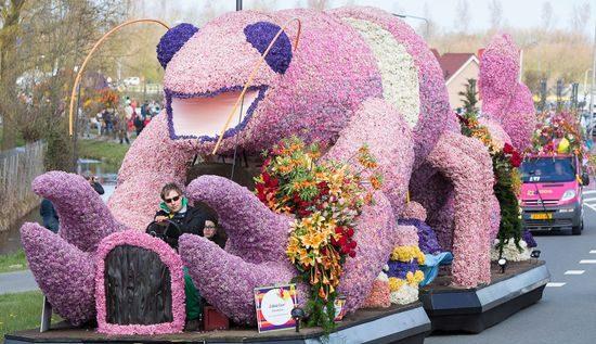 фестиваль цветов в Голландии (12)