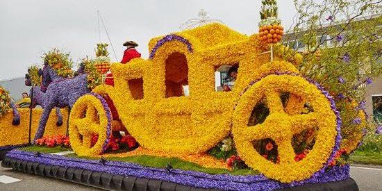 фестиваль цветов в Голландии (15)