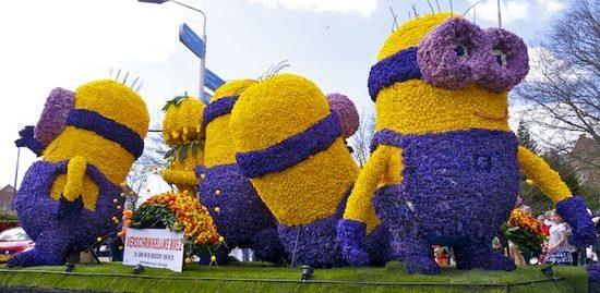 фестиваль цветов в Голландии (16)