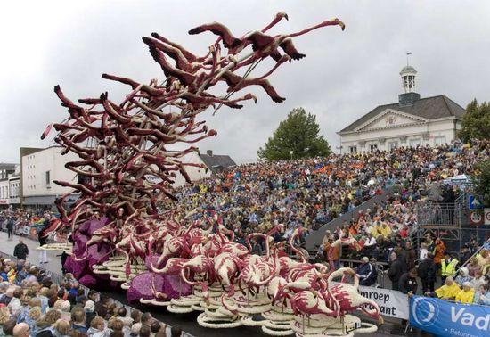 фестиваль цветов в Голландии (5)