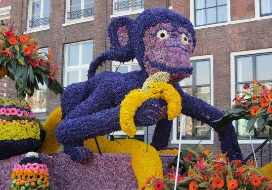 фестиваль цветов в Голландии (6)