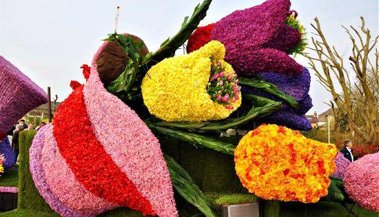 фестиваль цветов в Голландии (8)