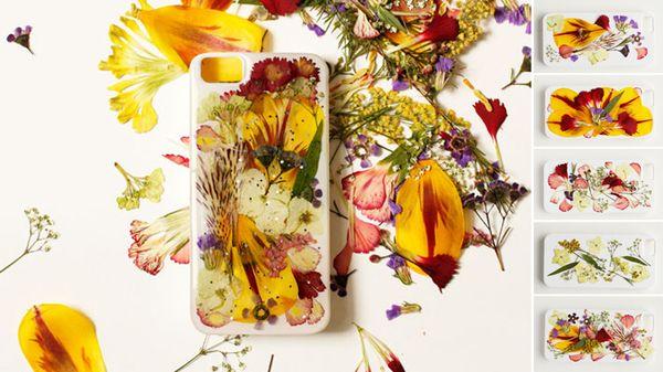 гербарий из цветов