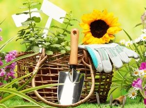 подкормка садовых миниатюра