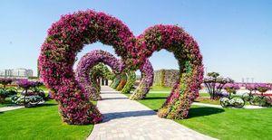 Dubai Miracle Garden миниатюра