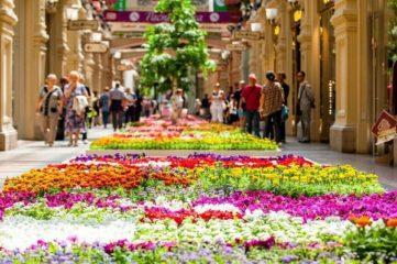 фестиваль цветов в москве миниатюра