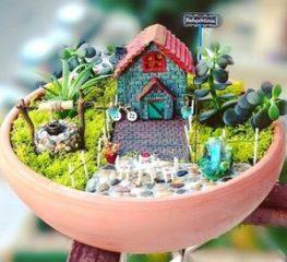 сад в горшке Miniabahce миниатюра