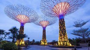 сады сингапура - миниатюра