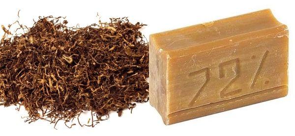 табак и хозяйственное мыло
