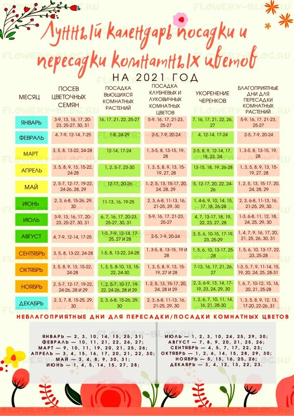 Лунный календарь посадки и пересадки комнатных цветов на 2021 год